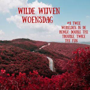 WWW: Twee werelden in de remix